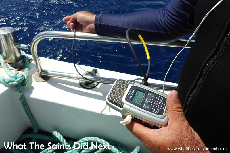 A hydrophone being used to listen to the underwater sounds.