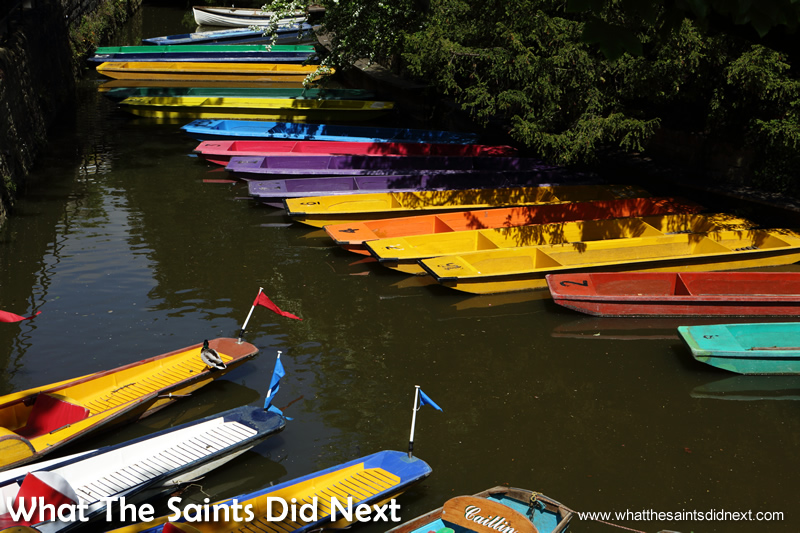 Punts lined up and ready for the summer tourists.