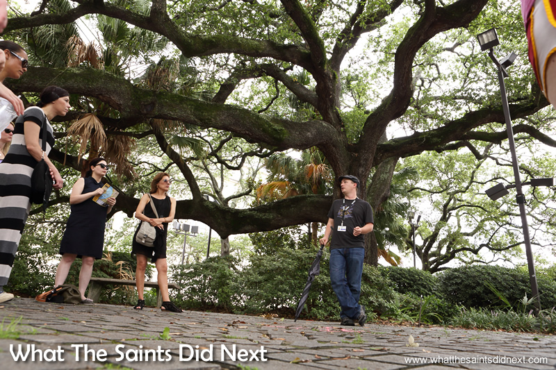 The Voodoo walking tour under the shade of a tree where it all began.