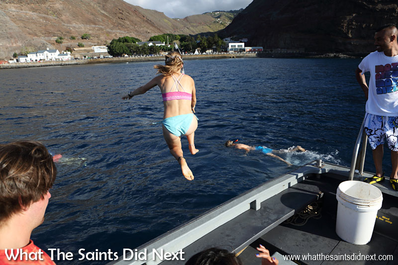 Some of the Class Afloat students on Gulden Leeuw have already declared St Helena as the best of all their stops on the voyage so far. High praise indeed. Here some of them jump into the harbour to snorkel the wreck of the Papanui which sank in 1911.