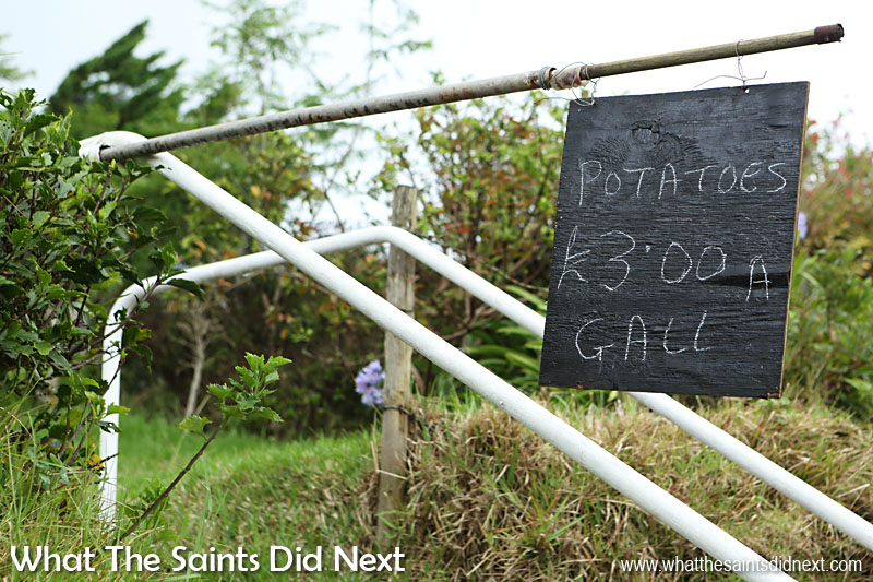 16 Pictures Celebrating St Helena Day 2016. Roadside advertising on the way to Longwood.