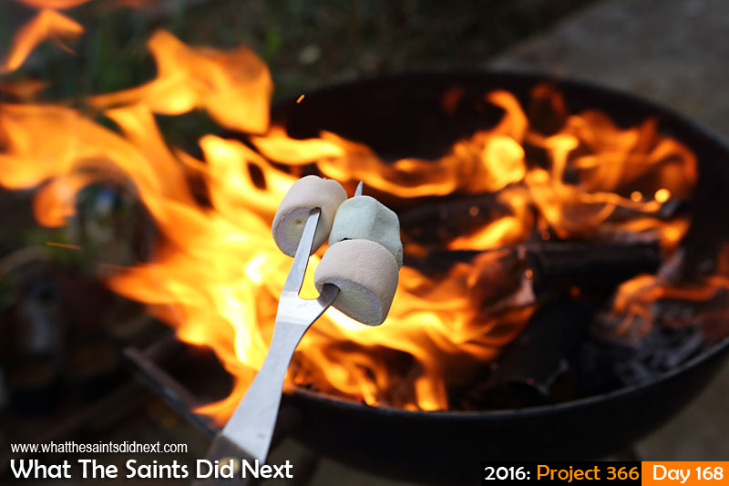 'MP Jo' 16 June 2016, 17:26 - 1/125, f/6.3, ISO-500 What The Saints Did Next - 2016 Project 366 Roasting marshmallows over the fire.
