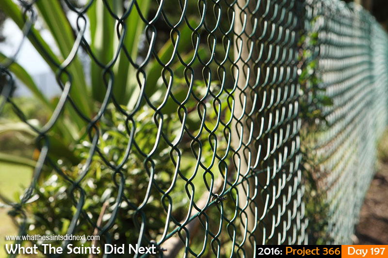 'Coup' 15 July 2016, 15:07 - 1/250, f/8, ISO-200 What The Saints Did Next - 2016 Project 366 Chain link fencing.