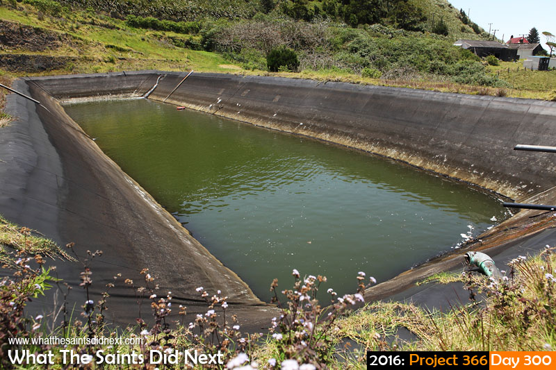 'Planting' 26 October 2016, 12:38 - 1/640, f8, ISO-200 What The Saints Did Next - 2016 Project 366 Water levels 'dangerously low' across St Helena, including at Hutts Gate reservoir.