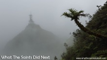 St Helena's amazing cloud forest in the Diana's Peak National Park.