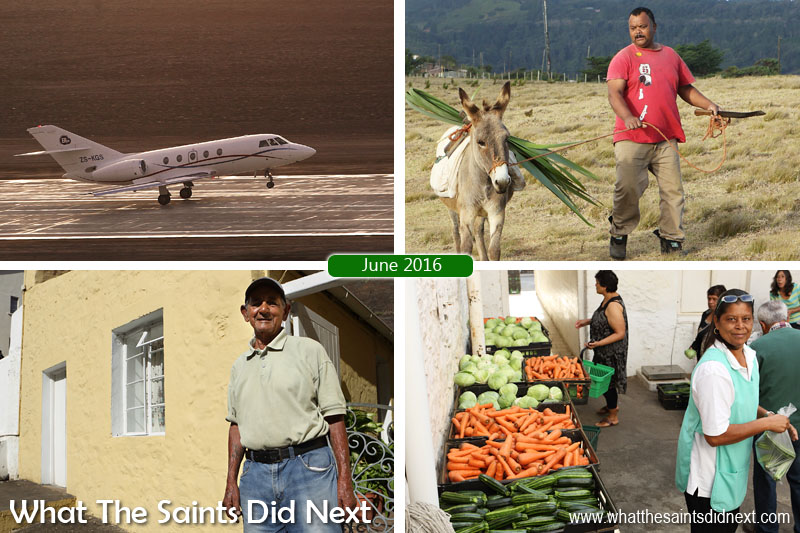 St Helena 2016: The Year In Review - June Clockwise from top left: First ever air medevac lifts off from St Helena Airport on 4 June. One of the island's few remaining working donkeys being led across Deadwood Plain. Vegetable day at Thorpes Grocery Store in Jamestown. Jamestown resident, Derek Bennett (85), tells us how he stays so fit as we tour the town.