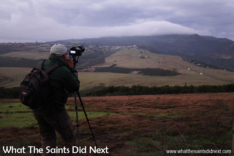Photography Project 366 - Day 23. A cold and windy dawn in January on the upper slopes of Deadwood Plain. Morning skies on St Helena can be clear at 5am then completely cloud covered an hour later, quickly spoiling an early start.