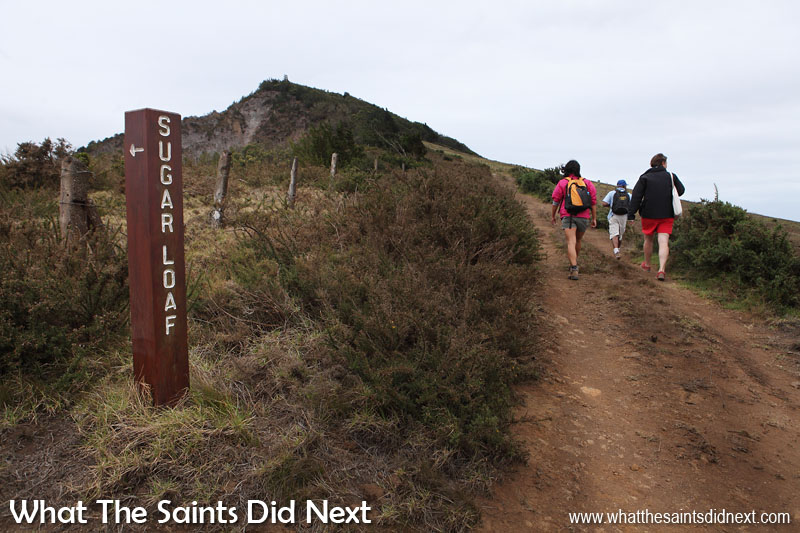 Turn left here as the sign post indicates, for Sugar Loaf. We by-passed this to visit Flagstaff first and then took a short-cut to re-join the path later. Sugar Loaf Post Box walk, St Helena.
