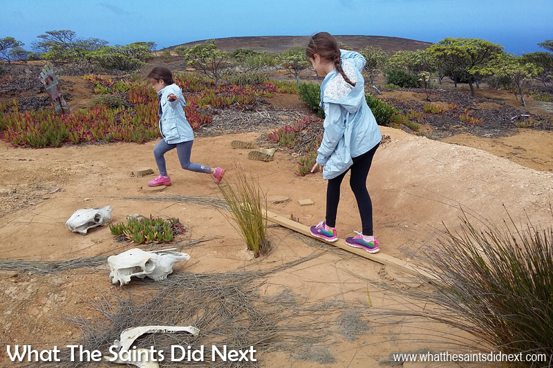 Things To Do With Kids On St Helena - Part of the Millennium Forest, Adventure Nature Trail, involves a mini obstacle course to cross the 'swamp,' which is great fun for children of all ages.