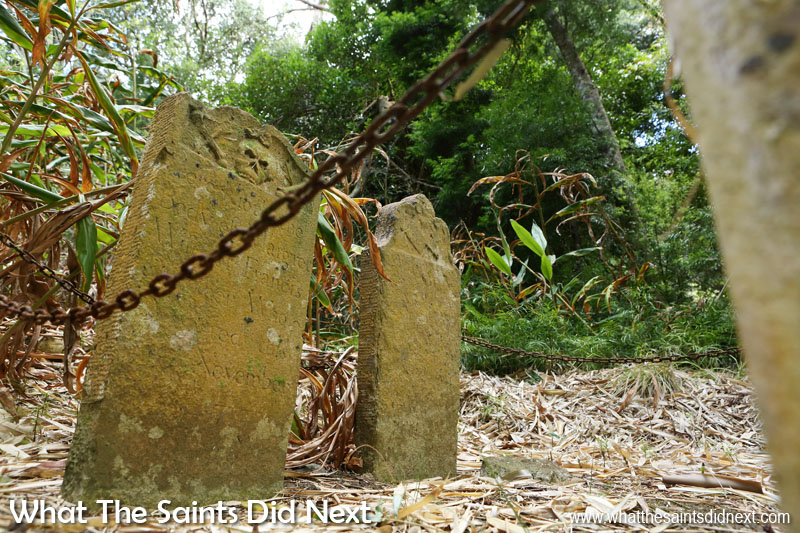 Things To Do With Kids On St Helena - The butcher's graves in Plantation Forest.