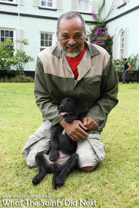 Roddy Yon with his very relaxed puppy, Thor. New Dogs, Old Tricks - Dusty's Dozen.